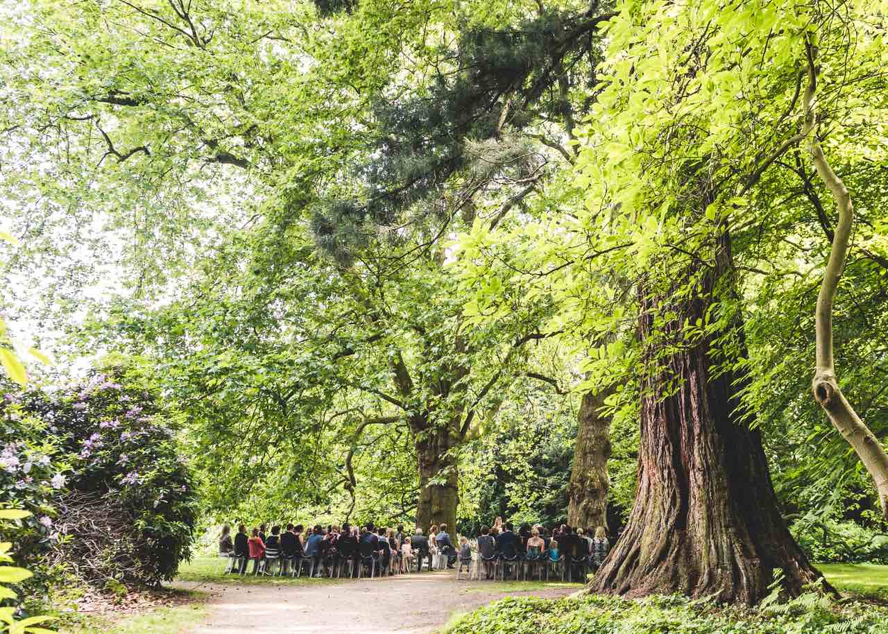 Hochzeit im Wald, Waldhochzeit, Hochzeit in der Natur, Hochzeit in Holland